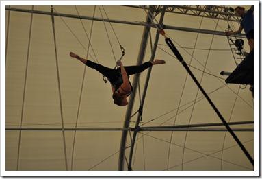 Trapeze at TSNY
